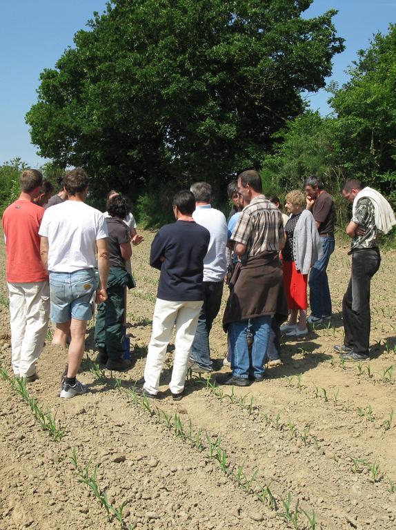 Progresser en groupe services pro agri pays de la loire for Chambre agriculture mayenne